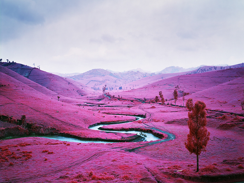 Richard Mosse The Impossible Image