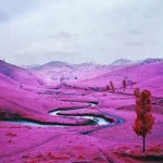 Richard-Mosse-Foam-Amsterdam