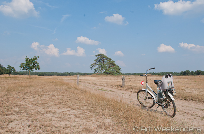 Cycling in the Hoge Veluwe National Park.