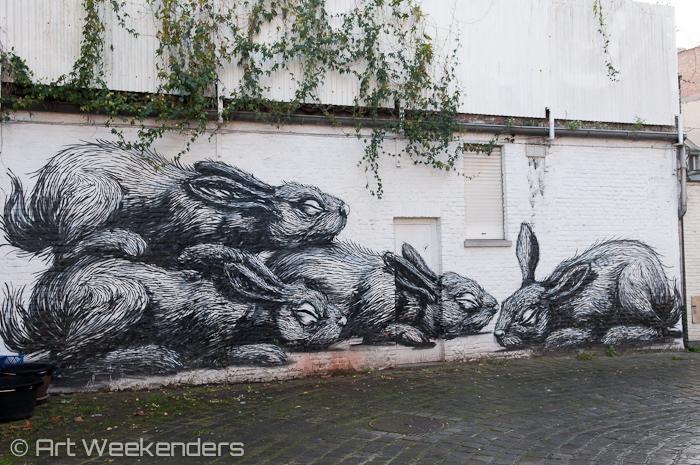 Belgium Ghent Streetart ROA Concrete Canvas