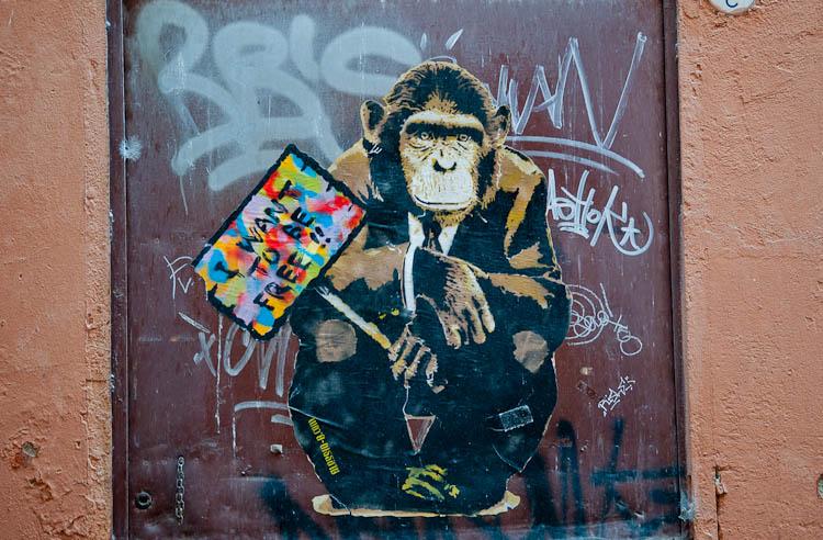 street art bologna italy monkey