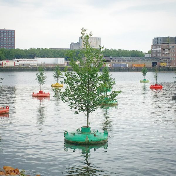 Bobbing-forest-rotterdam-the-netherlands-dobberend-bos-floating-trees